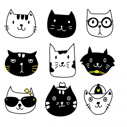 Sticker Mural Neuf Chat