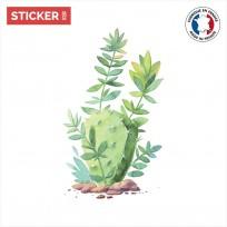 Sticker Cactus Feuilles