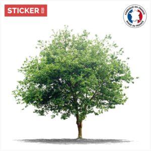 Sticker Arbre Réel
